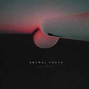 Animal Youth annonce un premier album vinyle