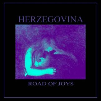 Road Of Joys -single-