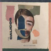 Driftwood -single-