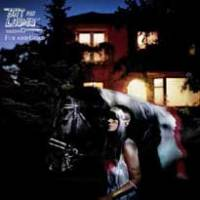 Nouvel album pour Bat For Lashes